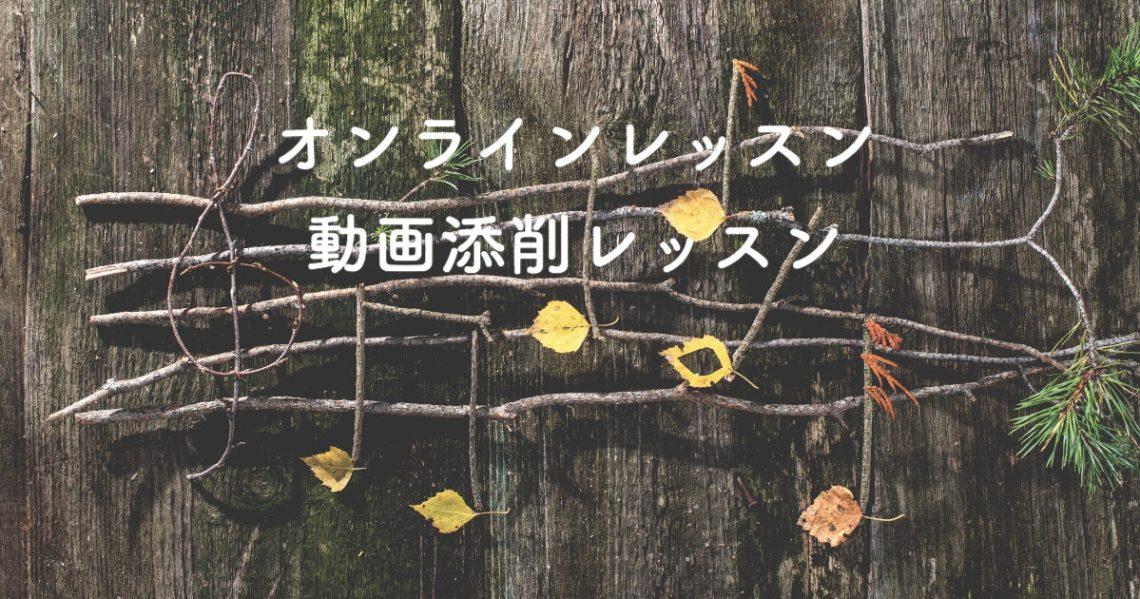 オンライン・動画添削レッスン